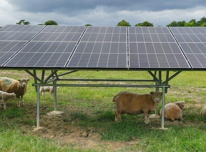 Why SunGift loves the Cornish Rocker ground mounted solar PV system